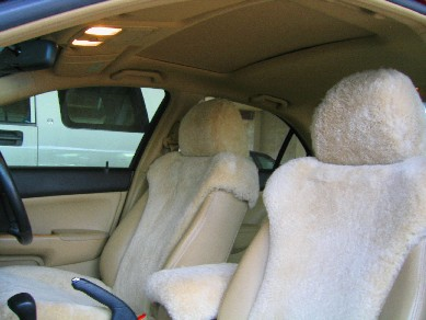 Wondrous Tailored Car Truck And Motorcycle Seat Covers Unemploymentrelief Wooden Chair Designs For Living Room Unemploymentrelieforg